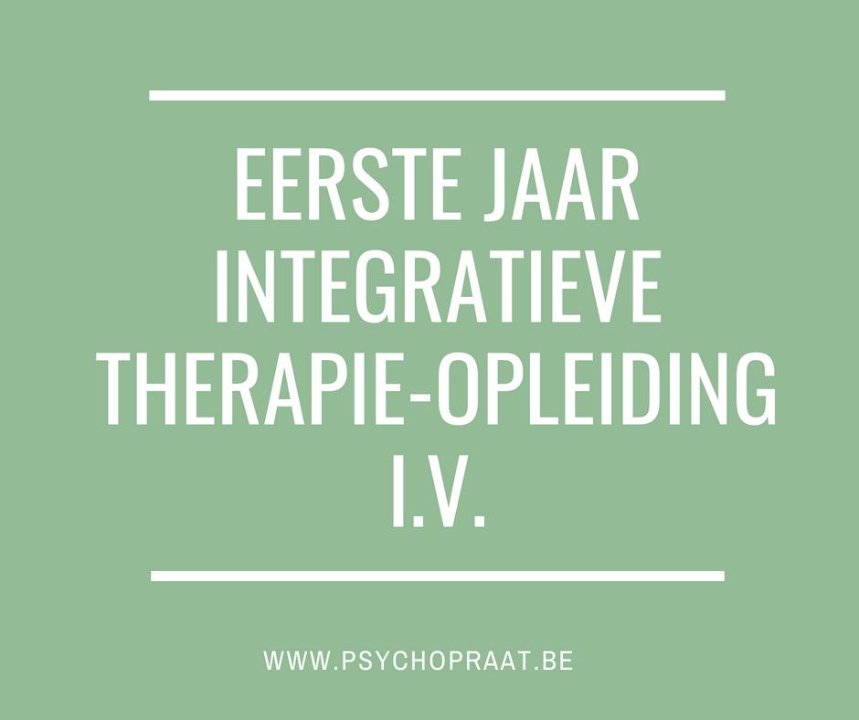 eerste jaar integratieve therapie opleiding IV